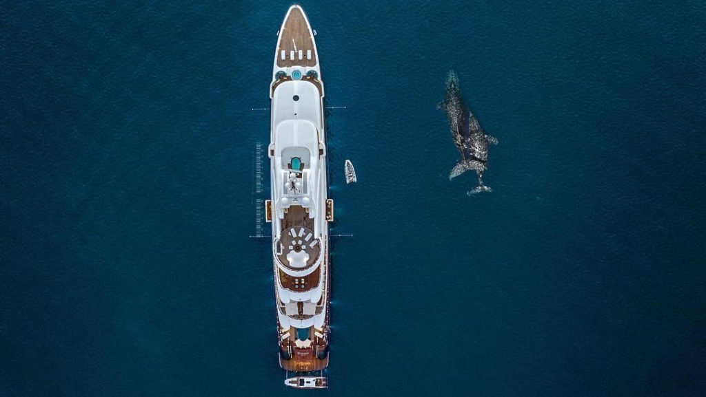 SOS Yachting supports Ocean Assist project